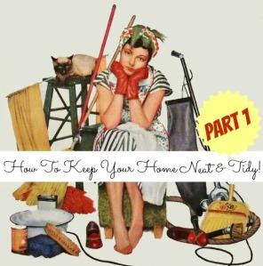 clean-house-41