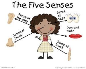 fives sense