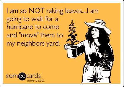 1351468733271_5548499 raking where's my xanax?,Raking Leaves Meme